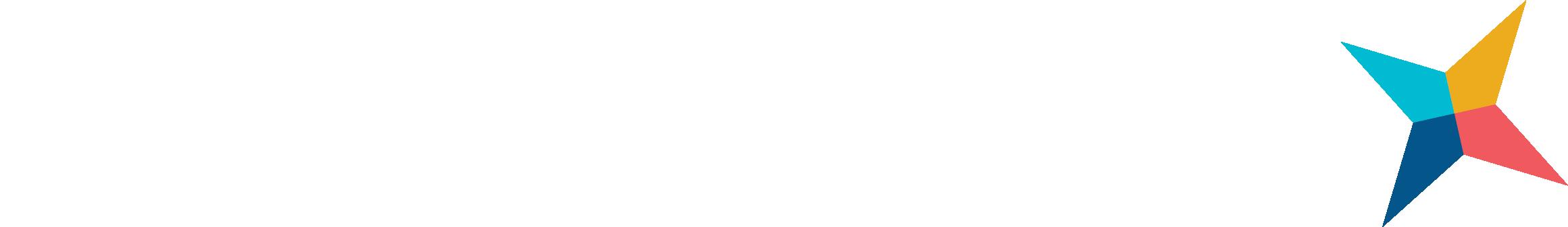 nf-logo-white-color